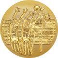 樹脂メダル_バレーボール